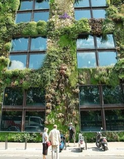 Succulents Living Walls Vertical Gardens Ideas39