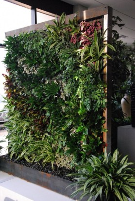Succulents Living Walls Vertical Gardens Ideas43
