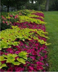 Beautiful Flower Beds Ideas For Home13