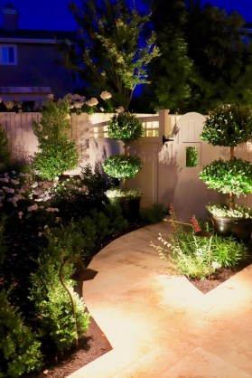 Cool Outdoor Lighting Ideas For Landscape16