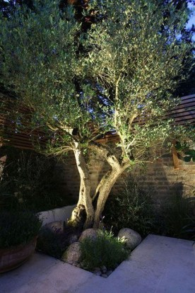 Cool Outdoor Lighting Ideas For Landscape25