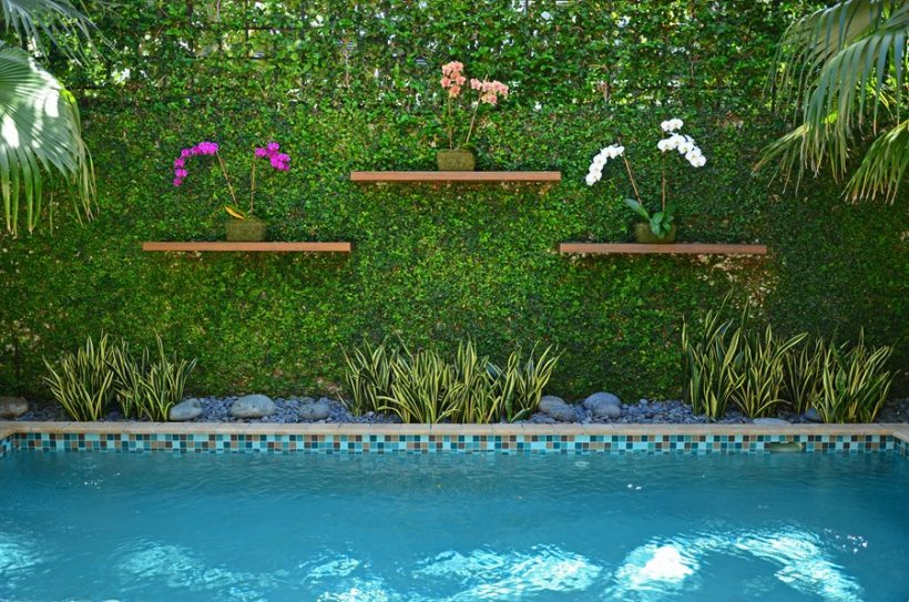 Tropical Poolside Landscaping