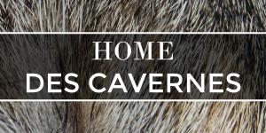 Home des cavernes