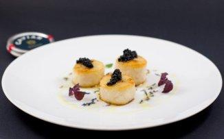 e017-st-jacques-caviar-800x500-v2