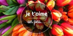 Read more about the article Je t'aime un peu…