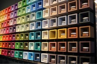 Edwinka x Little Shop of Colors