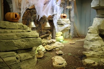 Zoo de Vincennes 62