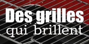 Read more about the article Des grilles qui brillent