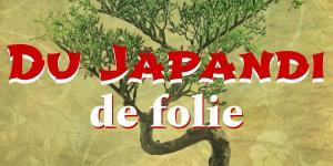 Read more about the article Du Japandi de folie