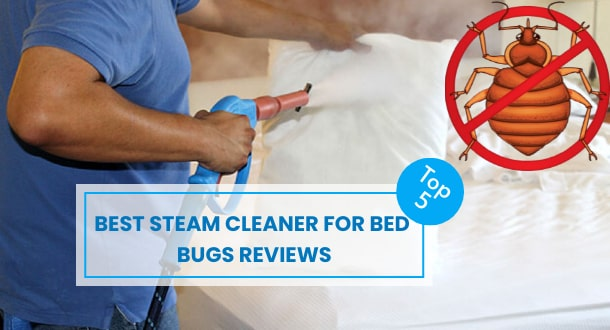 5 Best Steam Cleaner for Bed Bugs Reviews