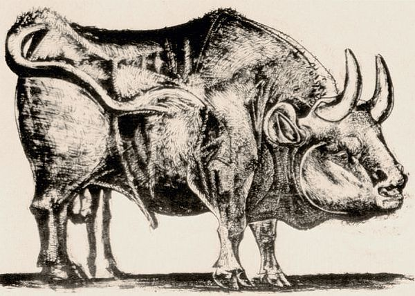 picasso_bull_plate_3