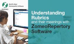 Understanding-Rubrics