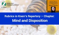 Knerr's Repertory - Mind Rubrics