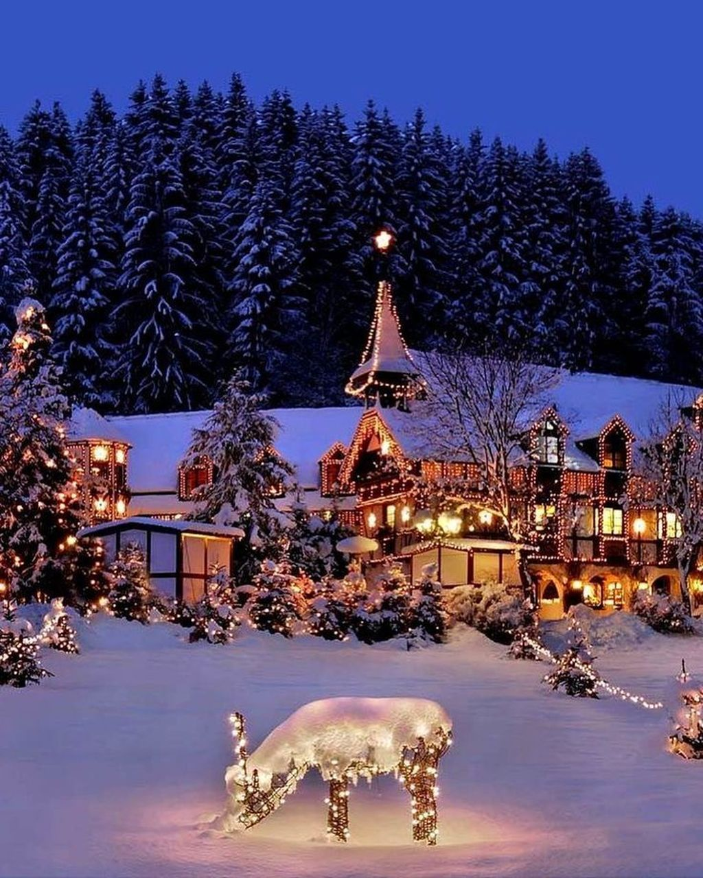 Beautiful Winter Wonderland Lighting Ideas For Outdoor And Indoor Decor 20