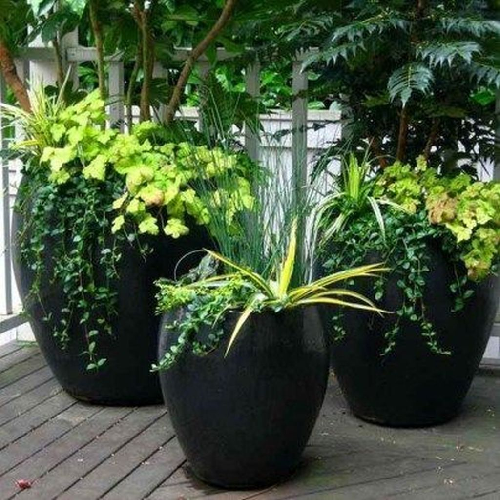 Lovely Combination Planting Container Gardening Ideas 16