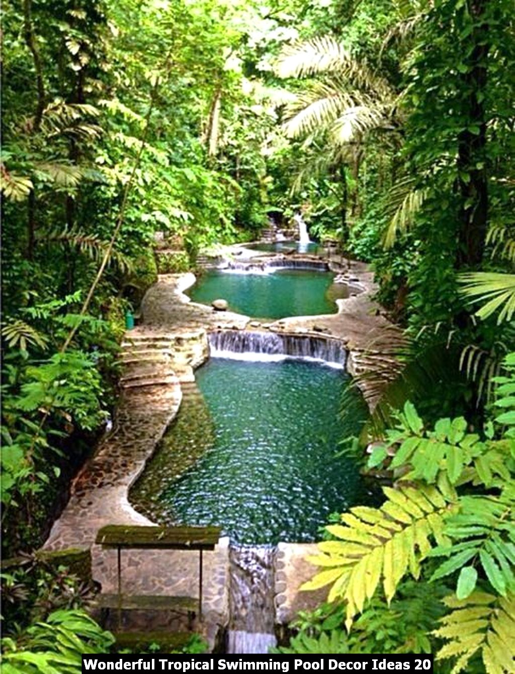 Wonderful Tropical Swimming Pool Decor Ideas 20