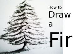 Realistic Christmas Tree Drawing