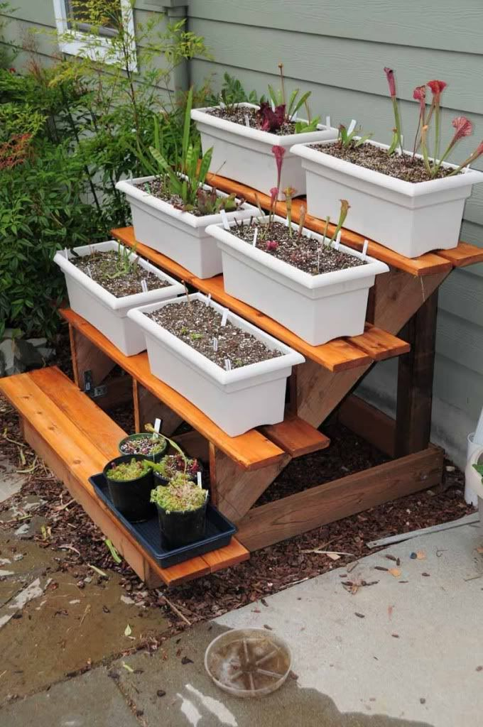 DIY Outdoor Plant Stand