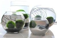 Attractive Indoor Water Garden Ideas For Enjoy Your Time 21