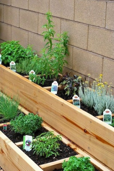 Chic Herb Garden Design And Remodel Ideas To Try Right Now 19