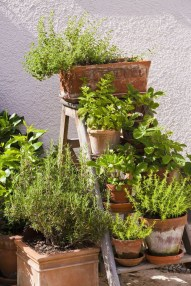 Chic Herb Garden Design And Remodel Ideas To Try Right Now 36