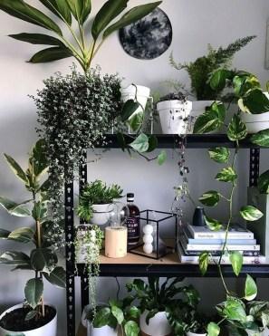 Extraordinary Indoor Garden Design And Remodel Ideas For Apartment 34