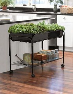 Extraordinary Indoor Garden Design And Remodel Ideas For Apartment 43