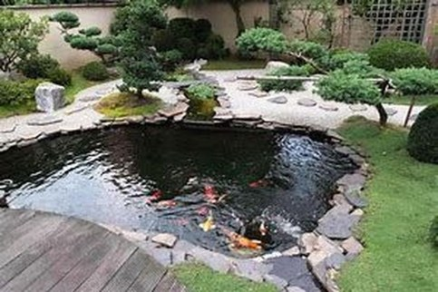Cool Fish Pond Garden Landscaping Ideas For Backyard 06