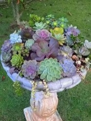 Cute Fairy Garden Design Ideas 26