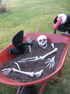 Top Halloween Outdoor Decorations To Terrify People 21