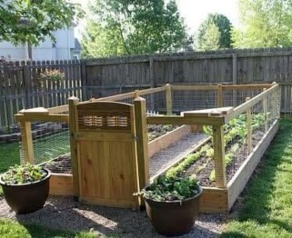 Exciting Ideas To Grow Veggies In Your Garden 05