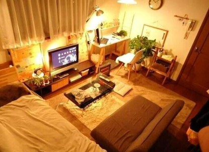 Brilliant Studio Apartment Decor Ideas On A Budget 21