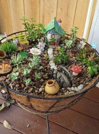 Pretty Fairy Garden Plants Ideas For Around Your Side Home 22