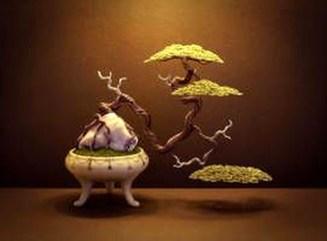Inspiring Bonsai Tree Ideas For Your Garden 10