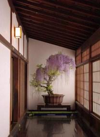 Inspiring Bonsai Tree Ideas For Your Garden 51