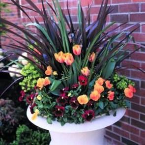 Creative Front Door Flowers Pot Ideas 29