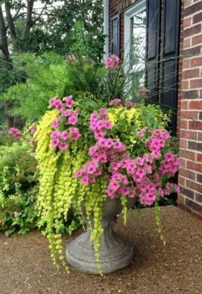 Creative Front Door Flowers Pot Ideas 42