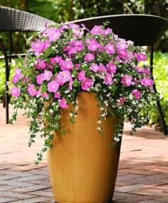 Creative Front Door Flowers Pot Ideas 45