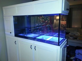 Modern Aquarium Partition Ideas For Living Room 02