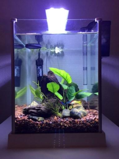 Modern Aquarium Partition Ideas For Living Room 23