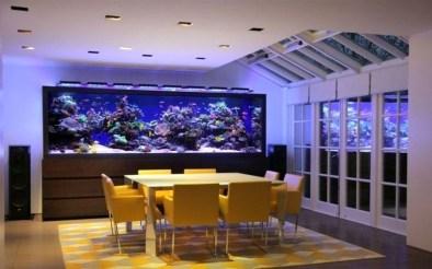 Modern Aquarium Partition Ideas For Living Room 24