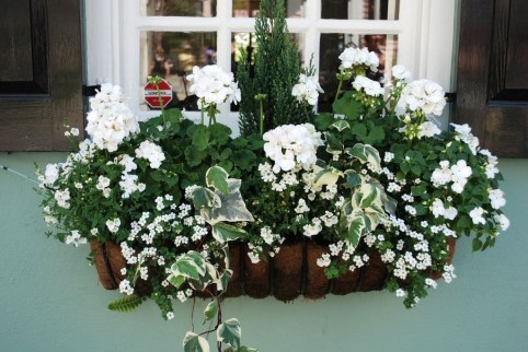 Wonderful Window Box Planters Yo Beautify Up Your Home 06