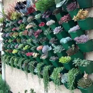 Best Ideas For Garden Succulent Landscaping 01