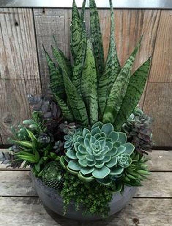 Best Ideas For Garden Succulent Landscaping 07