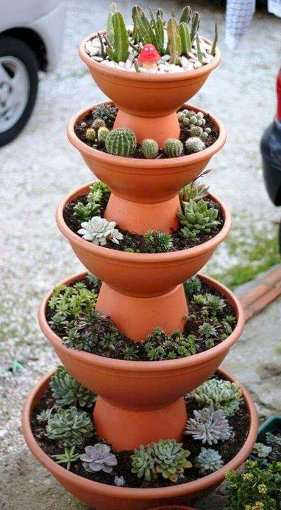 Best Ideas For Garden Succulent Landscaping 21