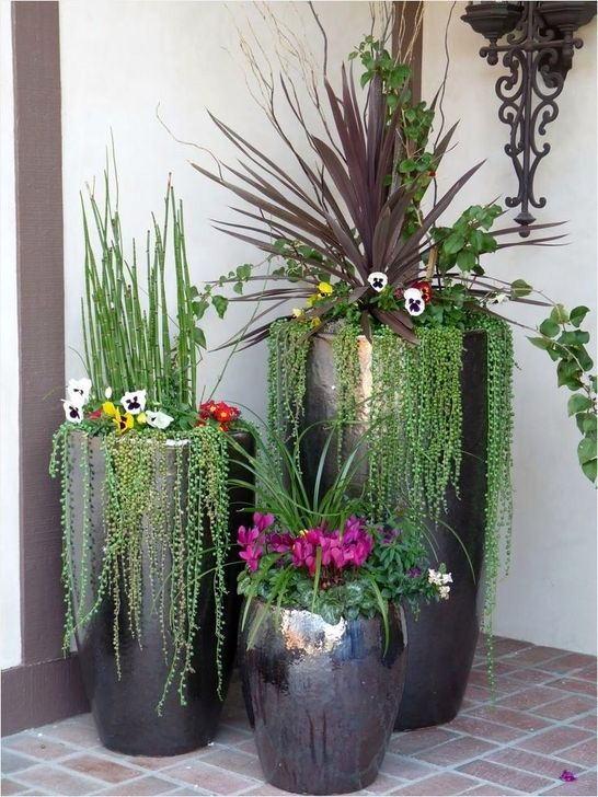 Modern Plant In Pot Ideas For Your House Decoration 02