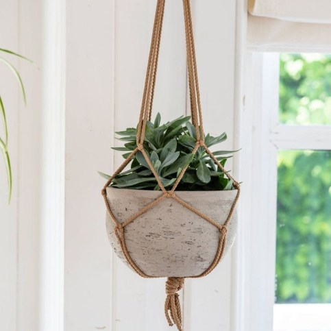 Modern Plant In Pot Ideas For Your House Decoration 38