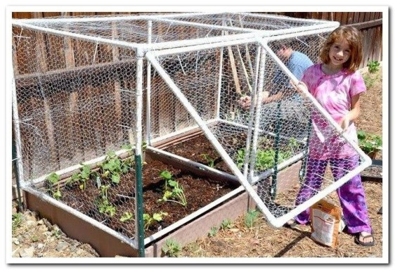 Stunning DIY Garden Bed To Beautify Your Backyard 16