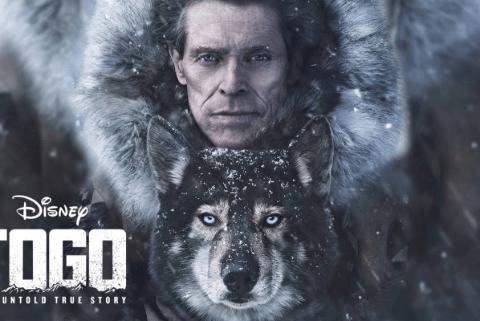 Download Togo Movie