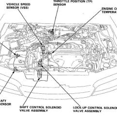 2001 Honda Crv Parts Diagram Anterior Teeth Accord Ex Transmission Free Wiring For 1994 Problems Help Tech Automatic